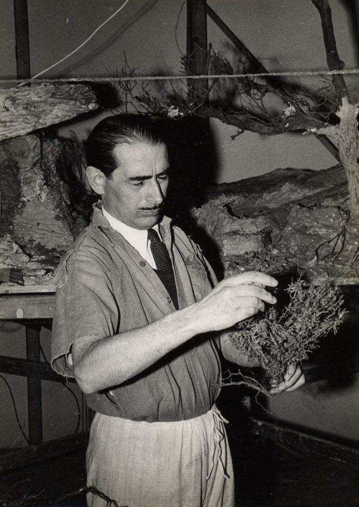 Navidad 1952 - 1953